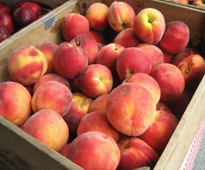Fresh Peaches, Nectatine Fresh Peaches, Wild Fresh Peaches, Cheap Fresh Peaches, FRESH PEACHES FOR SALE