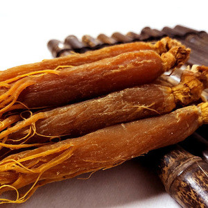 Herbal medicine organic quality red ginseng root