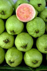 High quality Frozen Guava dice/puree/halves/whole for sales