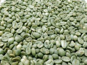 Java Preanger Coffee