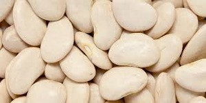 New Crop 2017 Lima Beans/Lima Beans / High Quality Lima Beans