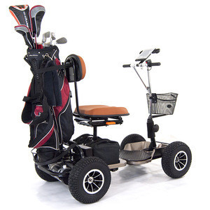 Ruidi Golf cart