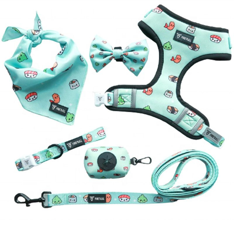 Import OEM accept adjustable dog collar leash and reversible harness set with dog bowtie from China