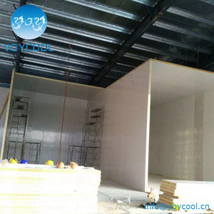 Metal faced Insulated Fireproof polystyrene PU sandwich panel for wall and ceiling board