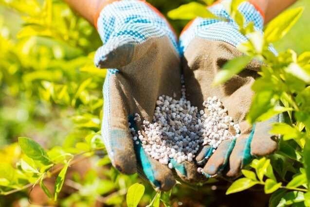 Fertilizers (Urea, DAP, MOP, MAP, NPK..etc)