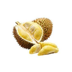 Thailand wholesale organic fresh durian