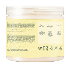 Castor Oil Natural And Organic Moisture Argan Hair Mask