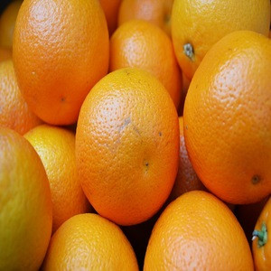 Fresh orange fruit / orange oil - Wholesale for Fresh Citrus Fruit - High quality dried orange / soft dried orange