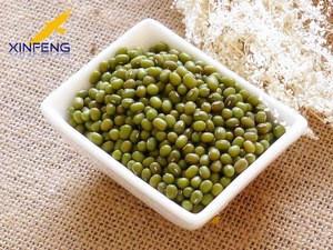 New Crop Green Mung Bean  from China