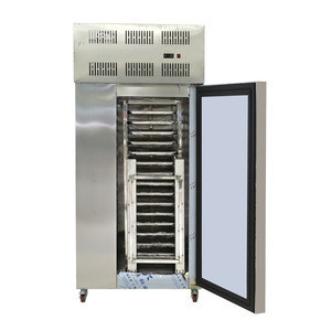 -45 degree 300L 500L 1000 Liter seafood meat snacks gelato quick freezing IQF blast freezer machine