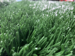 Artificial Grass, Synthetic Turf, FUN-AT55