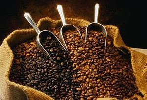 Coffee Beans (Robusta, Excelsa, Liberica and Arabica