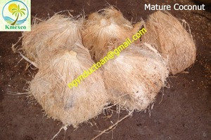 FRESH COCONUT FOR EXPORT
