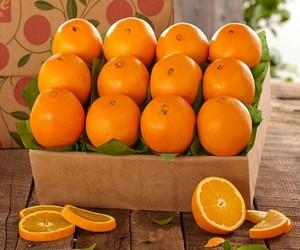 List of yellow fruits Fresh tangerines fresh mandarin oranges
