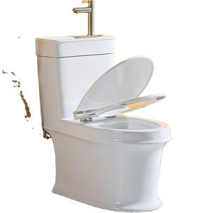 PATE bathroom sink freestanding floor mounted combo toilet bowl with water basin