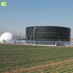 Professional design waste management use anaerobic digester biogas price