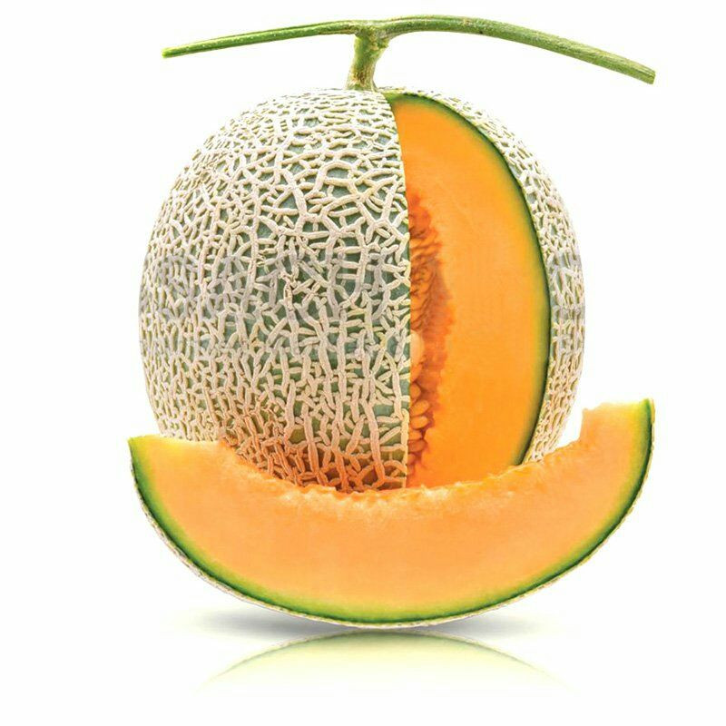 High Quality Melon with HACCAP, ISO, GAP Certificate - Big Sale for water melon Export to EU, USA, Korea, Japan, etc