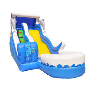Top Quality Water Amusement Sea Big Inflatable Water Slide With Pool for Adult