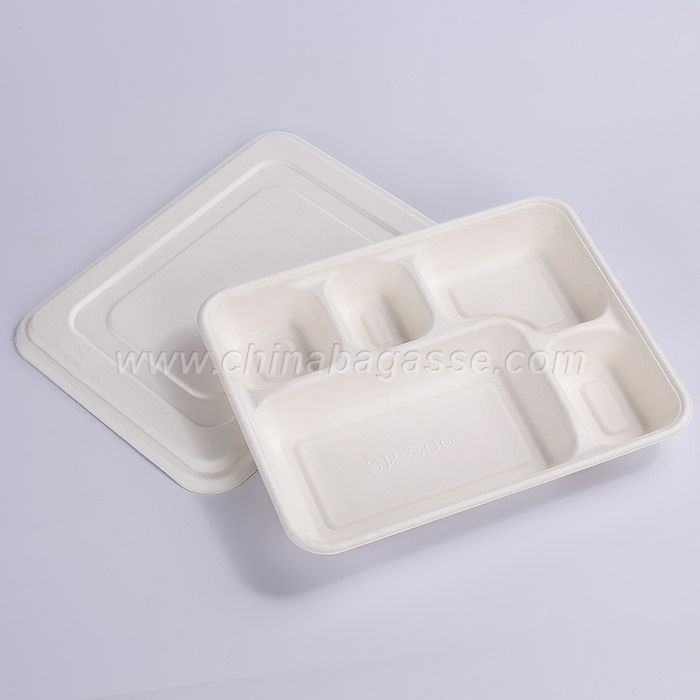 Biodegradable Disposable Deep Tray with Lid Sugarcane School Lunch Tray