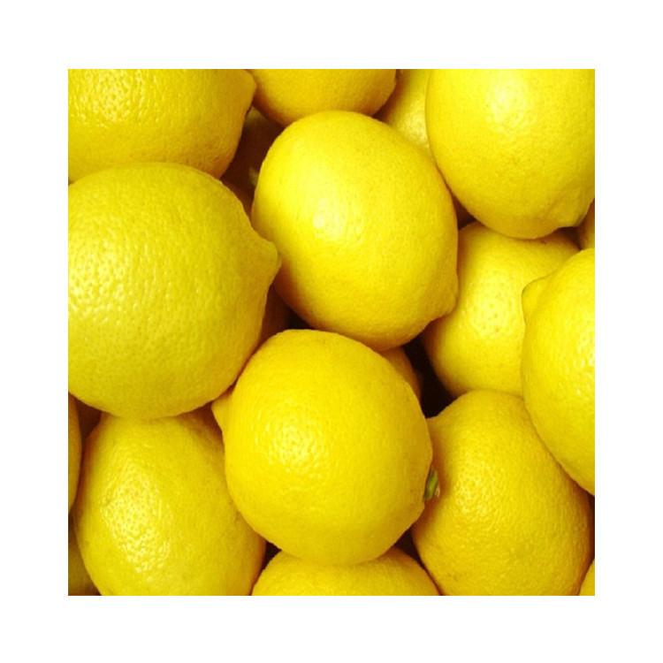 Fresh Eureka Lemons for sale - Yellow Eureka Lemons in stock - Best Quality and Price