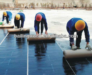 Sbs/app modified bitumen waterproof membranes