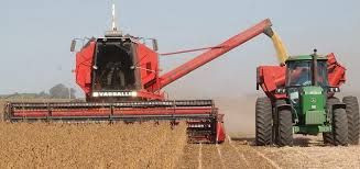 2019 Soft Offer - Soybean # 2 GMO - UP to 200,000 Mt per month