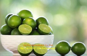 Fresh Lemon Fruits/Limes Fruits/Orange Fruits by MsBach0084935027124