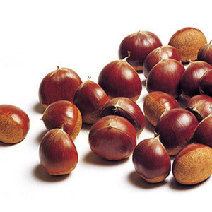 Producing area direct selling wholesale high quality fresh Chinese chestnut peelable chestnut kernel