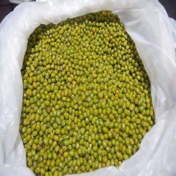 Green Mong Beans