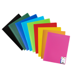 Opaque display book. Soft PP Cover. 60 views .