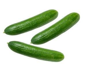 Fresh green cucumber,High Quality Fresh Cucumber,Frozen Cucumber