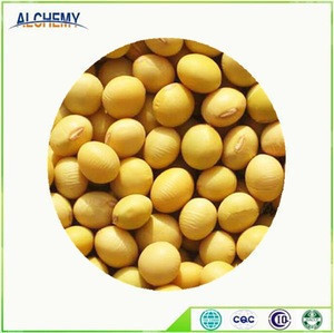 Cheap soybeans for sale