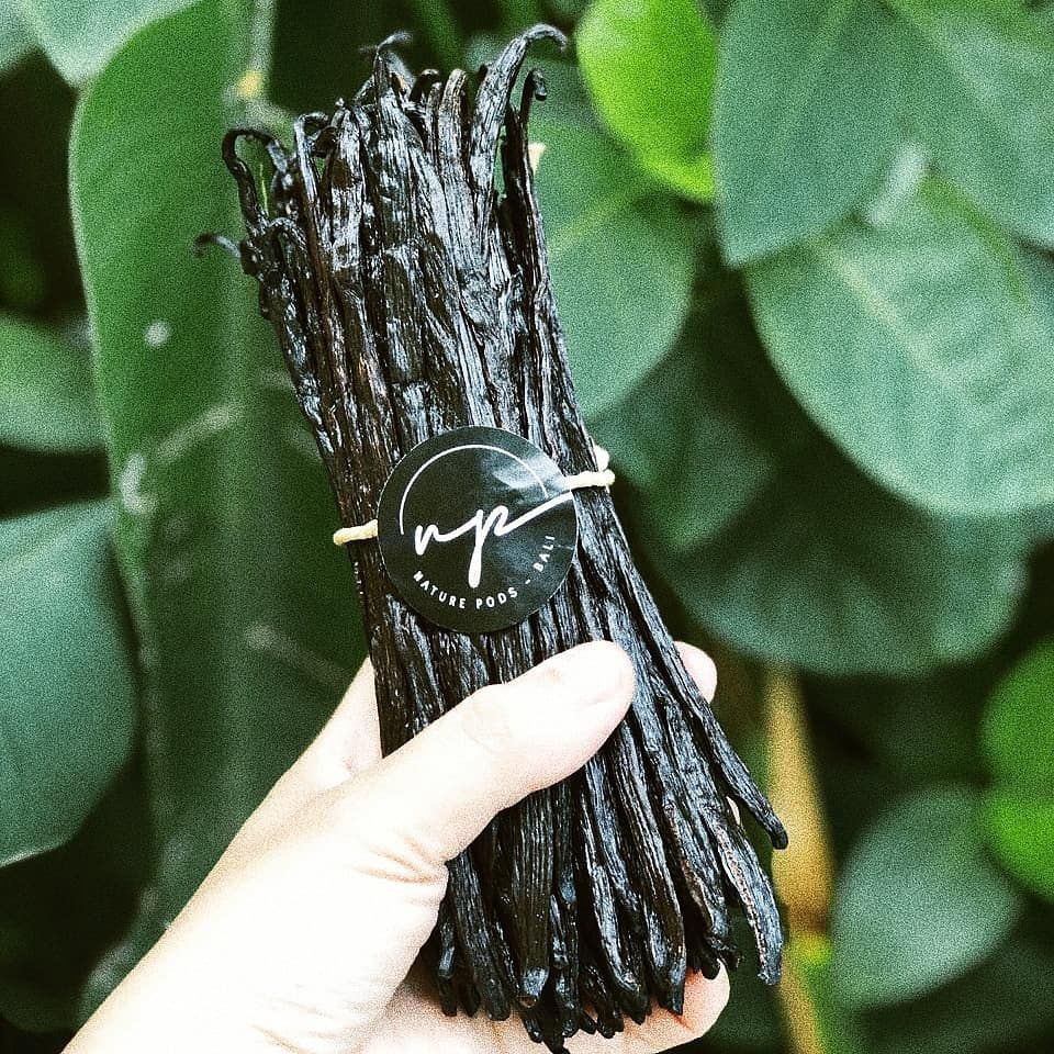 Best Indonesian Vanilla Beans Negotiable Price and Low MOQ