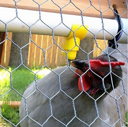 lowest price poultry wire 1/2 chicken wire mesh/hexagonal chicken wire netting