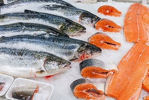 Fresh Salmon Fish / Salmon From Norway - 100% Export Quality Salmon Fish