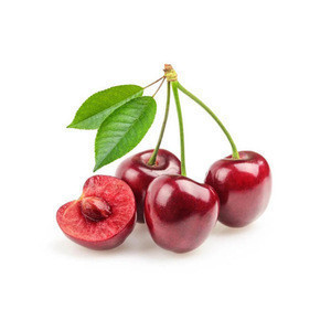Wholesale cherry fresh with top quality