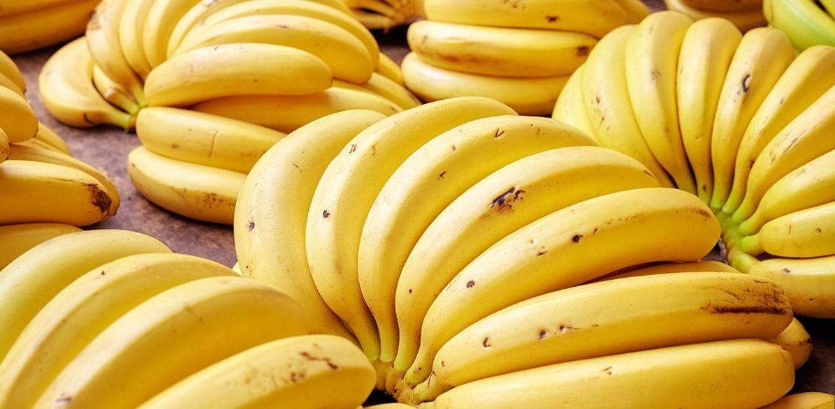 Cavendish Bananas