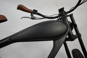 2018 Vintage electric bike electric bicycle for adults
