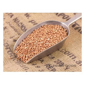 Roasted Buckwheat Wholesale supplier 100% High quality cheap rate Bulk Quantity