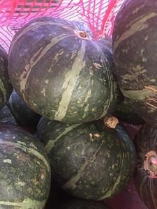 Fresh Japanese pumpkins (Kabocha) from central highland of Vietnam