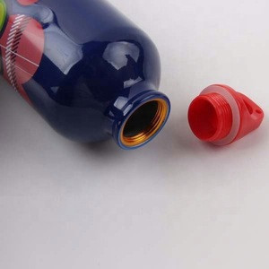 BPA Free Metal Aluminium Custom Sports Drink with Carabiner