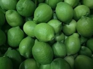 Green lemon/ Fresh lime/ fresh lemon seedless for sale