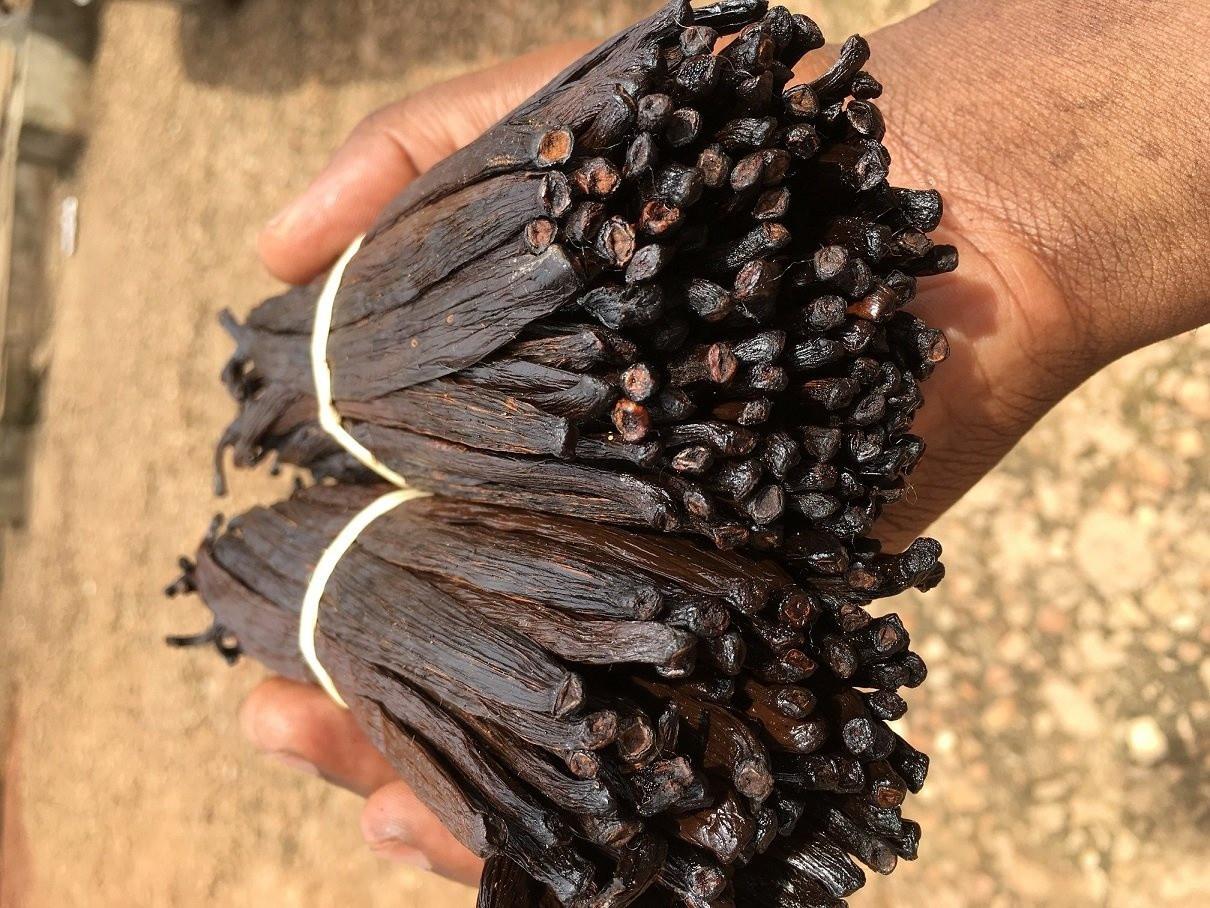 High Quality 14 18cm Grade a Madagascar Vanilla Beans with Good Price Black Dark Style Weight