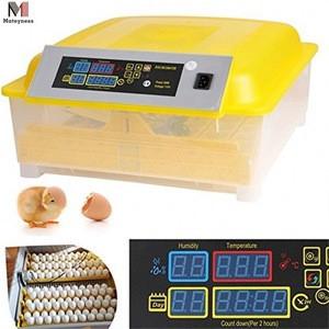 Home use Capacity 48pcs Automatic egg incubator and egg hatchery machine