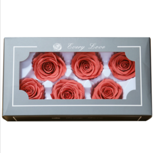 Shenzhen blossomingflora factory price preserved ecuador roses wholesale preserved flower