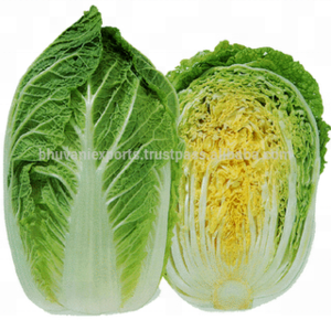 Chinese Cabbage/Fresh Cabbage/ Fresh Exotic Vegetables !!