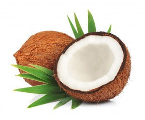 Natural Fresh Coconut for wholesale from India