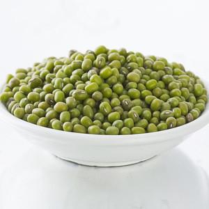 Organic Sprouting green mung beans