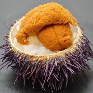 Tasty Sea Urchin Flavored Fish Ball Seafood