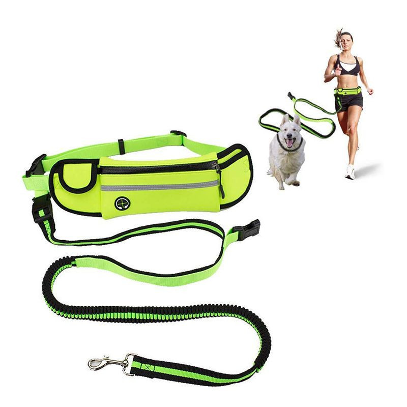 Retractable Hands Free Pet Dog Leash With Bag For Running Walking Training